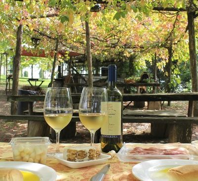 ROME FRASCATI WINE TOUR with lunch and WINE TASTINGS  (P9)