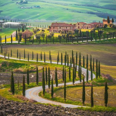 CHIANTI NOBLE WINE TOUR IN TUSCANY from Rome (P29)
