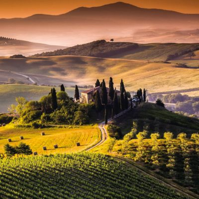WINE TASTING IN VAL D'ORCIA